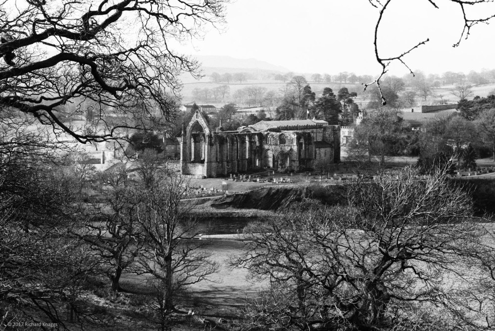 Bolton Abbey through the trees